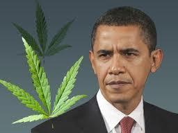 Обама и конопля