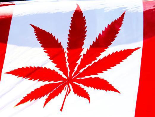 Canada и марихуана