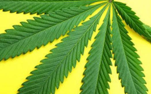 Декрименализация марихуаны