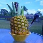 Бонг из ананаса