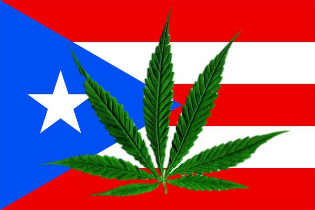 Пуэро-Рико и конопля