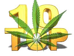 10 нелегальных наркотиков