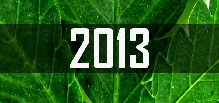 События 2013 года