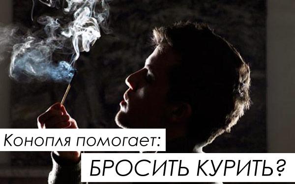 Конопля помогает бросить курить без последствий ?