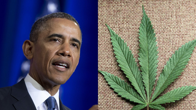 Обама о пользе и вреде конопли