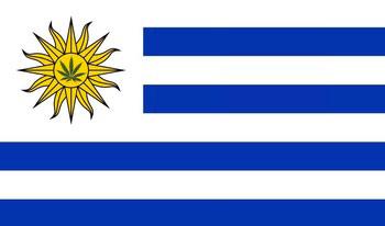 Уругвай и Парагвай