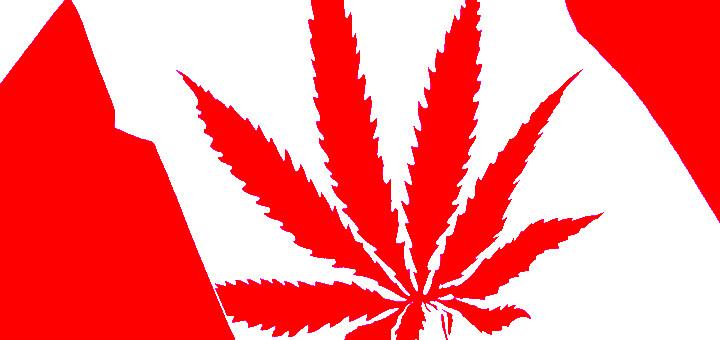 Будущее медицинской марихуаны в Канаде