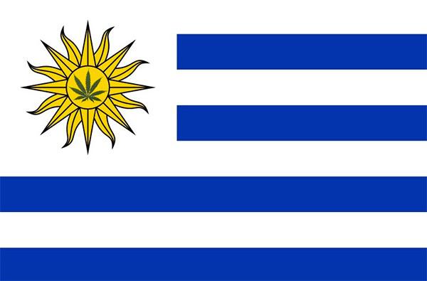 Легализация каннабиса в Уругвае