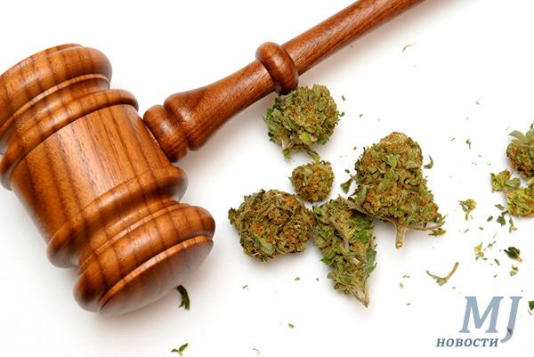 Правовой статус марихуаны в России