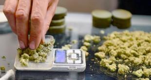 Медицинская марихуана в Беркли