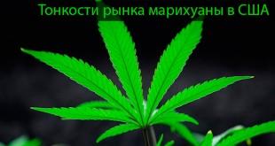 Продажа марихуаны в США