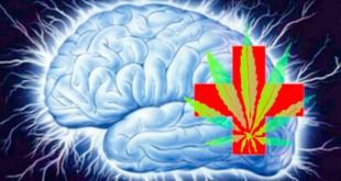 Марихуана и эпилепсия