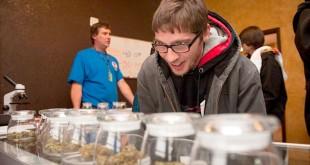 Продажа марихуаны в колорадо