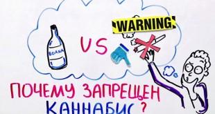 Почему запрещен каннабис