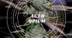 Авто Опиум сорт