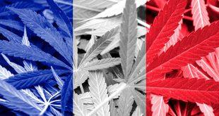 France-Marijuana