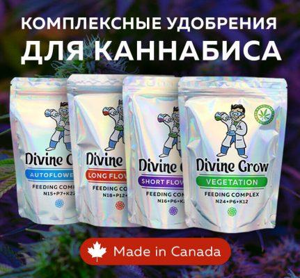 Konoplisemena.com