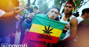 легализация марихуаны в Колумбии и Мексике