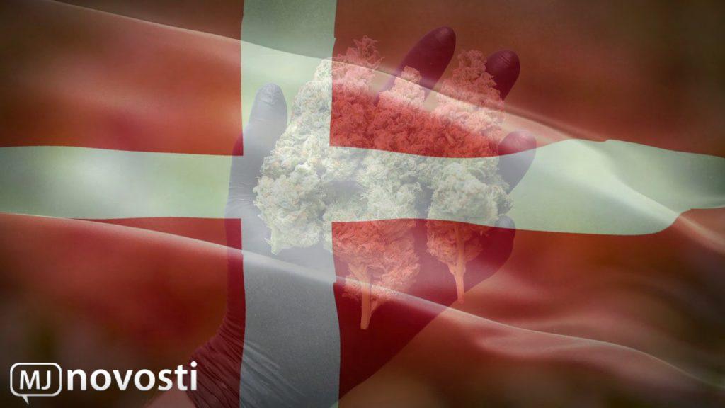 каннабис в Дании