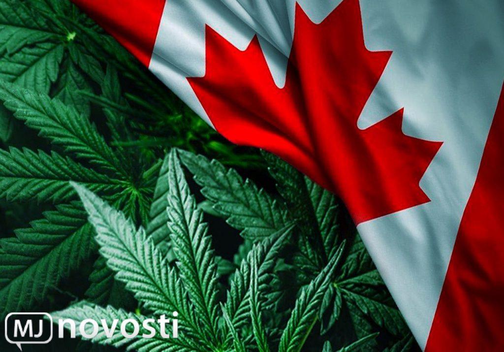 канадская марихуана: перспективы каннаиндустрии