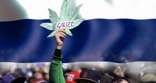 легализация марихуаны в Таиланде