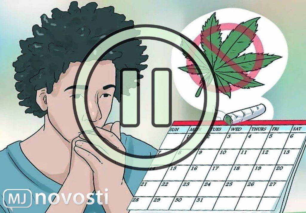 перерыв от марихуаны