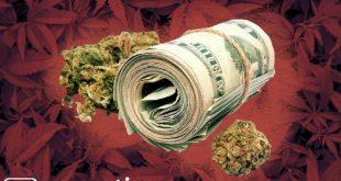 легализация каннабиса и цена марихуаны