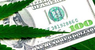 прибыль от марихуаны в сша